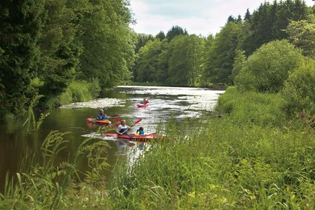 Ferienpark d'Oignies - Belgien - Ardennen