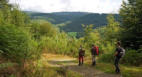 Camping Moulin de Hotton - België - Belgische Ardennen