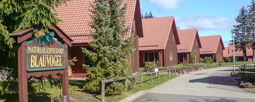 Village de vacances Blauvogel Hasselfelde