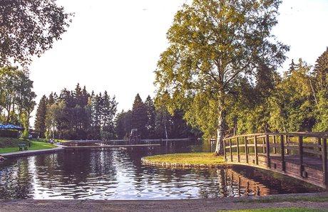 Vakantiepark Blauvogel Hasselfelde - Duitsland - Harz