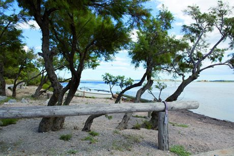Camping Ensoya - Frankrig - Languedoc-Roussillon