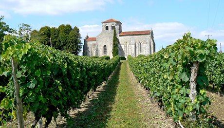 Vakantiepark Coteaux de Jonzac - Frankrijk - Poitou-Charentes
