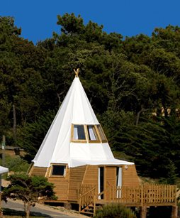Camping Domaine le Midi - France - Vendée
