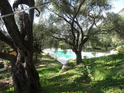 Villa Stefanos Apartments - Griekenland - Corfu