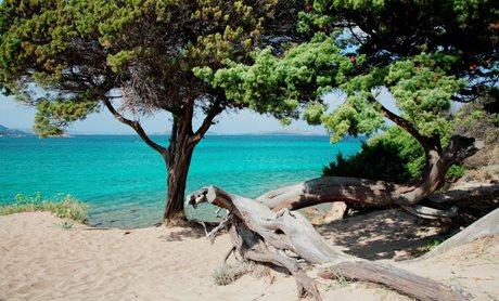 Camping Centro Vacanze Isuledda - Italien - Sardinien
