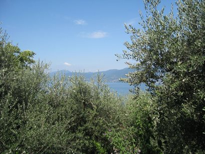 Residence Il Patio - Italien - Iseosee