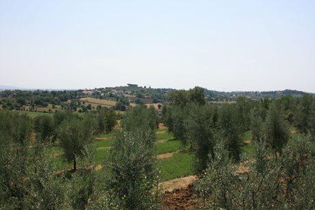 Casa Fanfulla - Italy - Tuscany