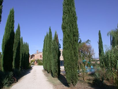 Agriturismo Quarantallina - Italien - Toskana