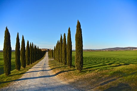 Borgo Beccanella - Włochy - Toskania