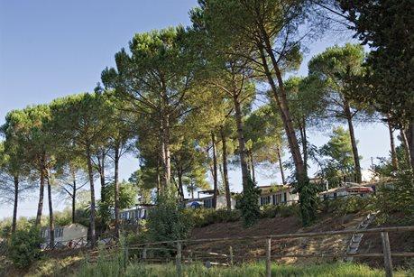 Camping Toscana Village - Italien - Toscana