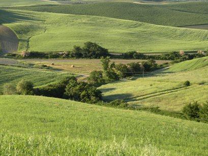 Agriturismo Panieracci - Italien - Toskana