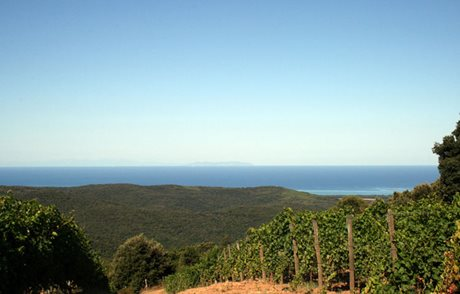 Agriturismo Eucaliptus - Włochy - Toskania