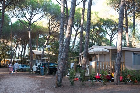 Camping International Etruria - Camping International Etruria - Italie - Toscane