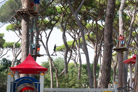 Camping Park Albatros - Italie - Toscane
