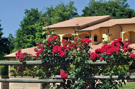 Terme di Sorano - Italien - Toskana