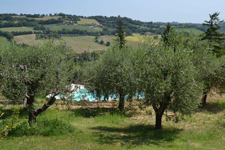 Agriturismo Casa Renili - Italië - Marche