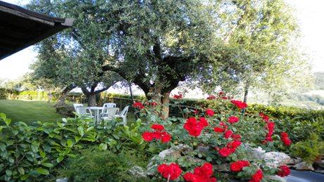 Countryhouse Il Girasole - Italien - Sydadriaterhavet