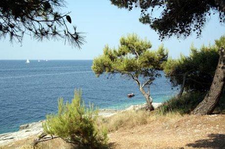 Camping Stoja - Kroatië - Istrië