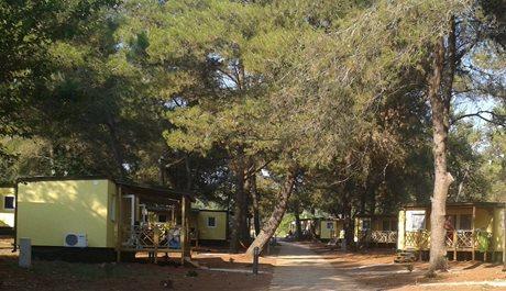 Camping Pineta - Kroatië - Istrië