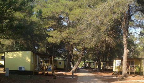 Camping Pineta - Chorwacja - Istria