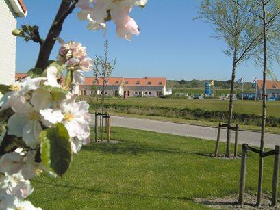 Vakantiepark De Soeten Haert - Nederland - Zeeland