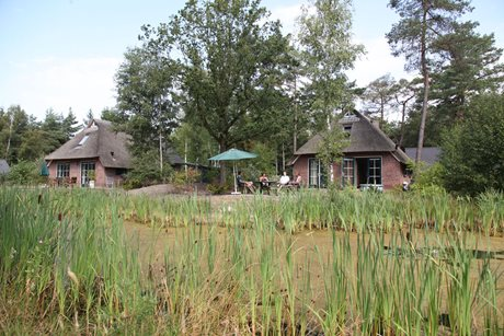 Vakantiepark Landgoed Het Grote Zand - Nederland - Drenthe