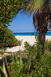 Camping Gavina - Spanje - Costa Dorada